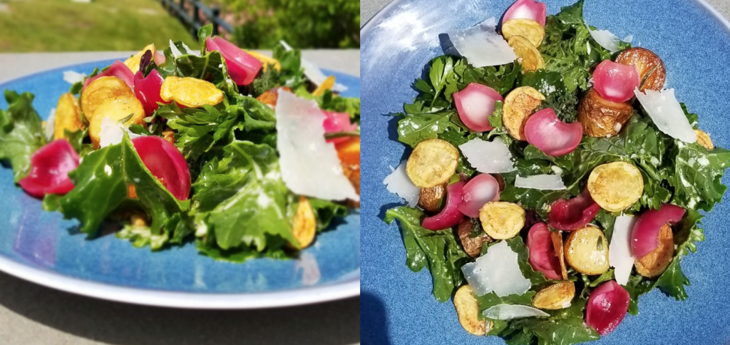 Garden Kale Salad (top and side view)